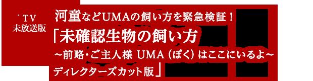 TV未放送版 「実録・あなたの街の霊出るハウス ディレクターズカット版」を無料配信中!!